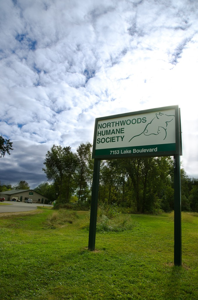The Vision of Northwoods Humane Society is a community with no more homeless or neglected companion animals.